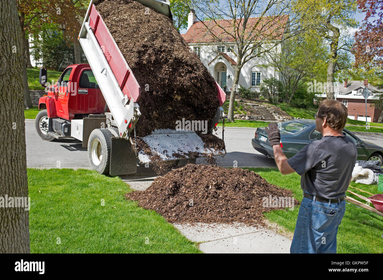 Worker directing the delivery of landscaping materials from a dump truck. St Paul Minnesota MN USA - Stock Image