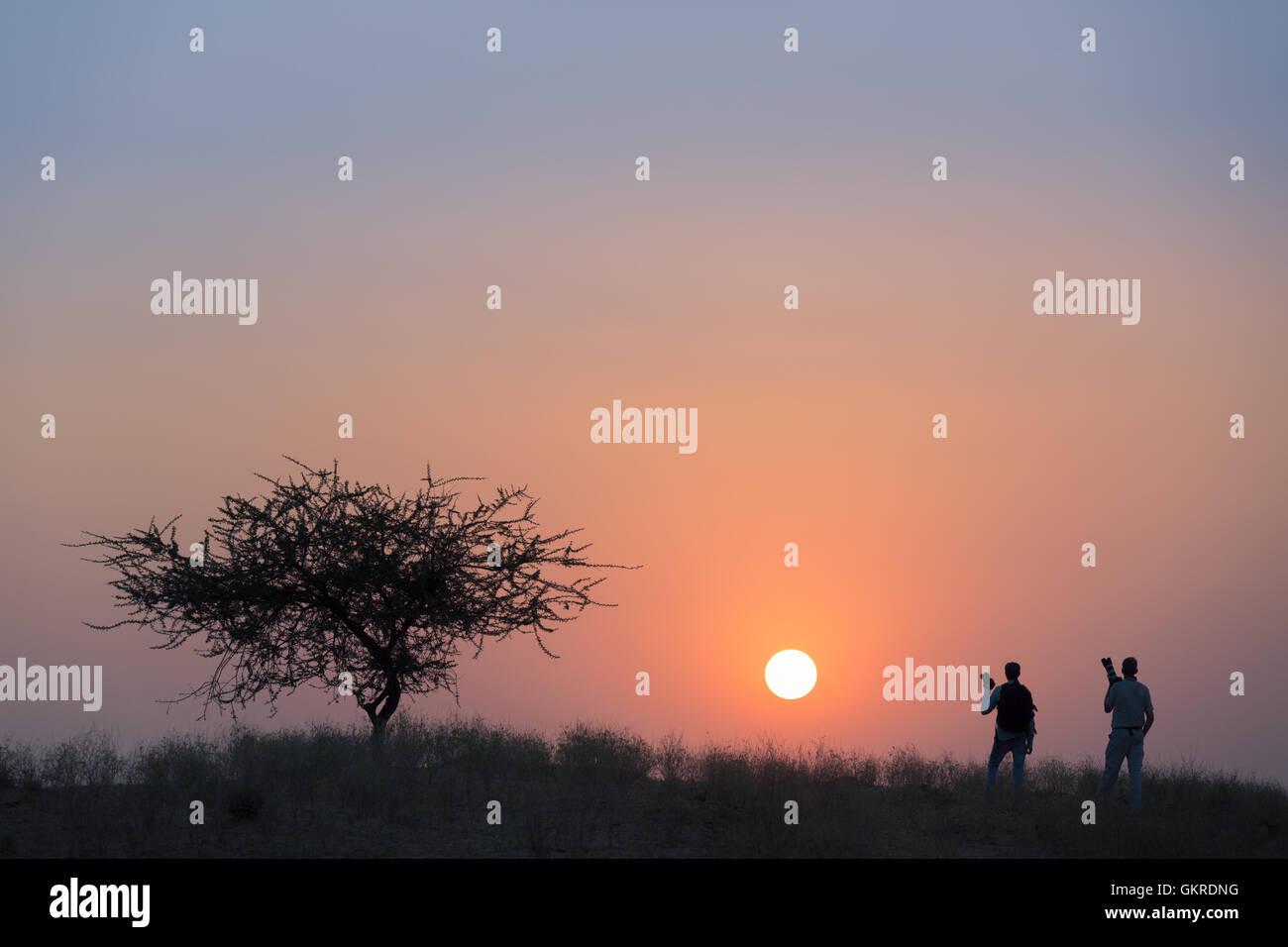 Two photographers watching the sunset, Pushkar, Rajasthan, India - Stock Image