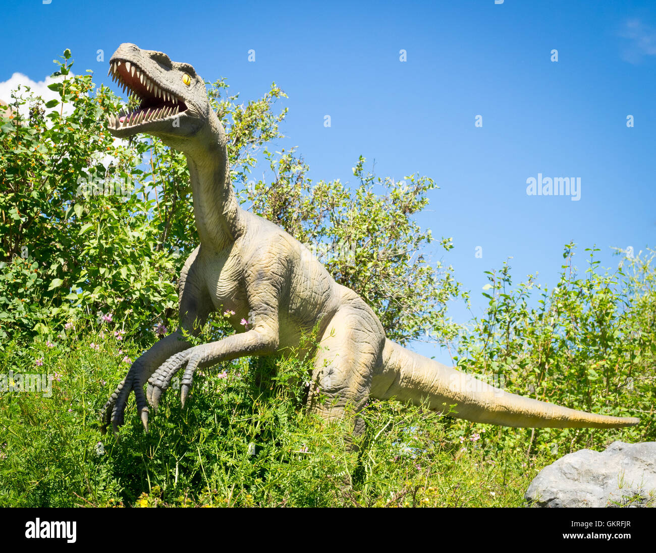 A model replica of a Yangchuanosaurus, an extinct genus of metriacanthosaurid theropod dinosaur, at the Calgary - Stock Image