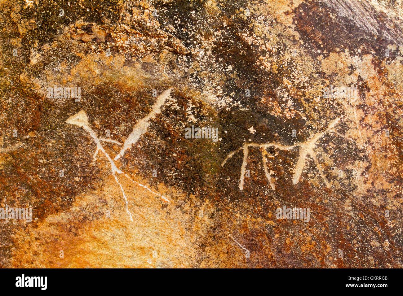 Rock Hieroglyphics Hawaii - Stock Image