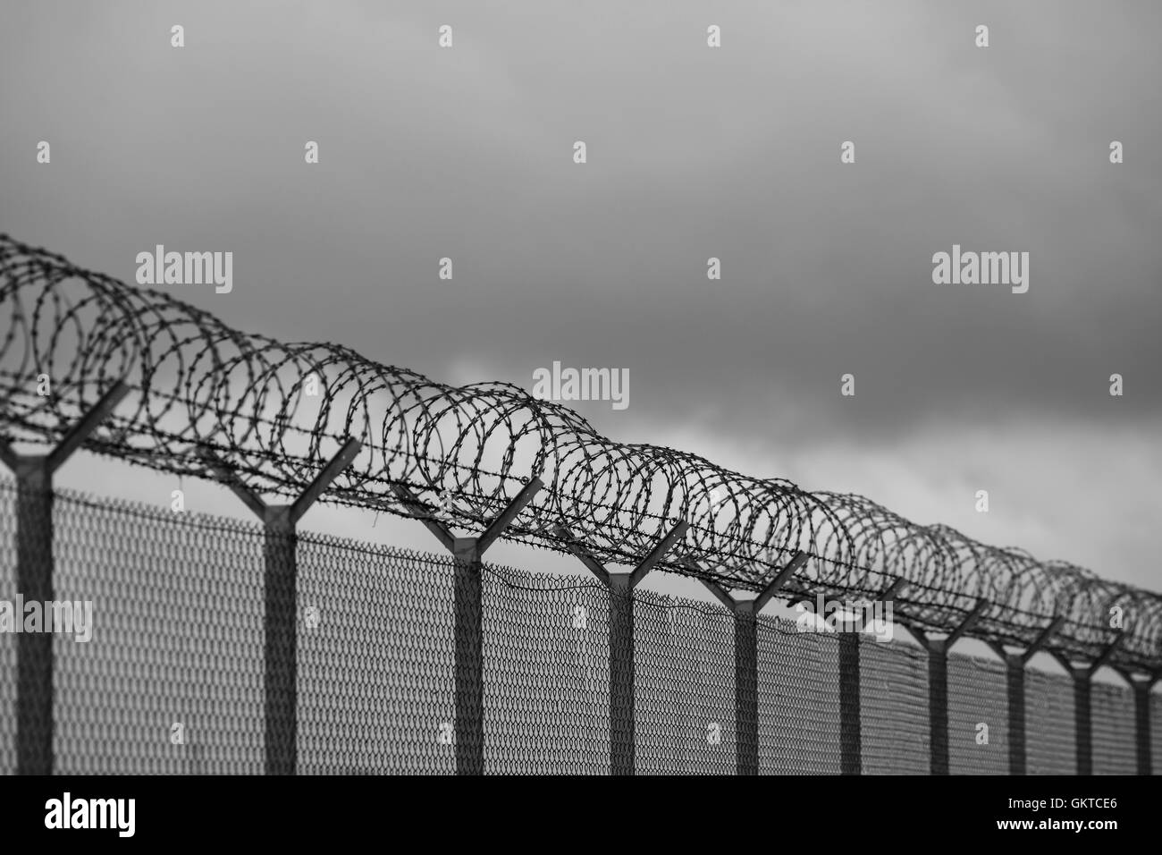 Barbed wire fence of restricted area - Stock Image