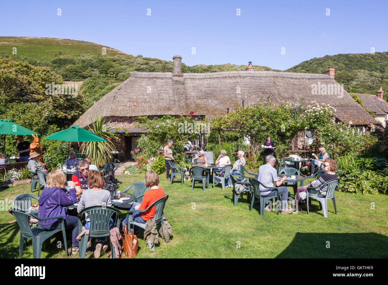 The garden of thatched Kitnors Tearoom in the Exmoor village of Bossington, Somerset UK - Stock Image