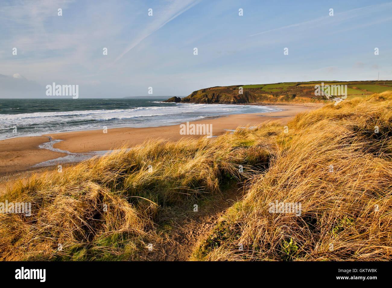 Praa Sands; Cornwall; UK - Stock Image