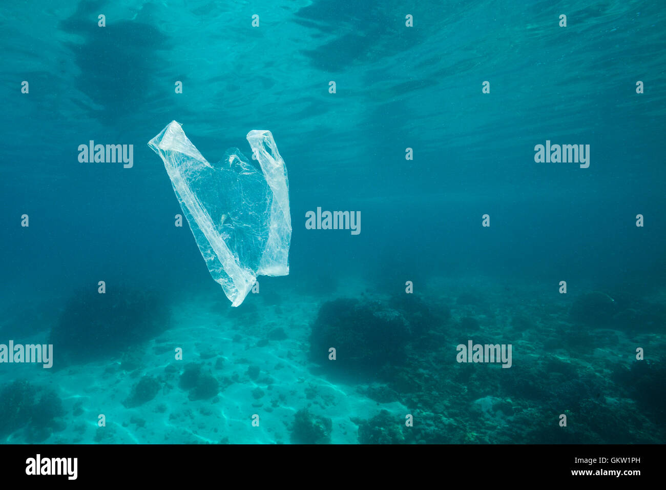 Plastic Bag adrift in Ocean, Ambon, Moluccas, Indonesia - Stock Image