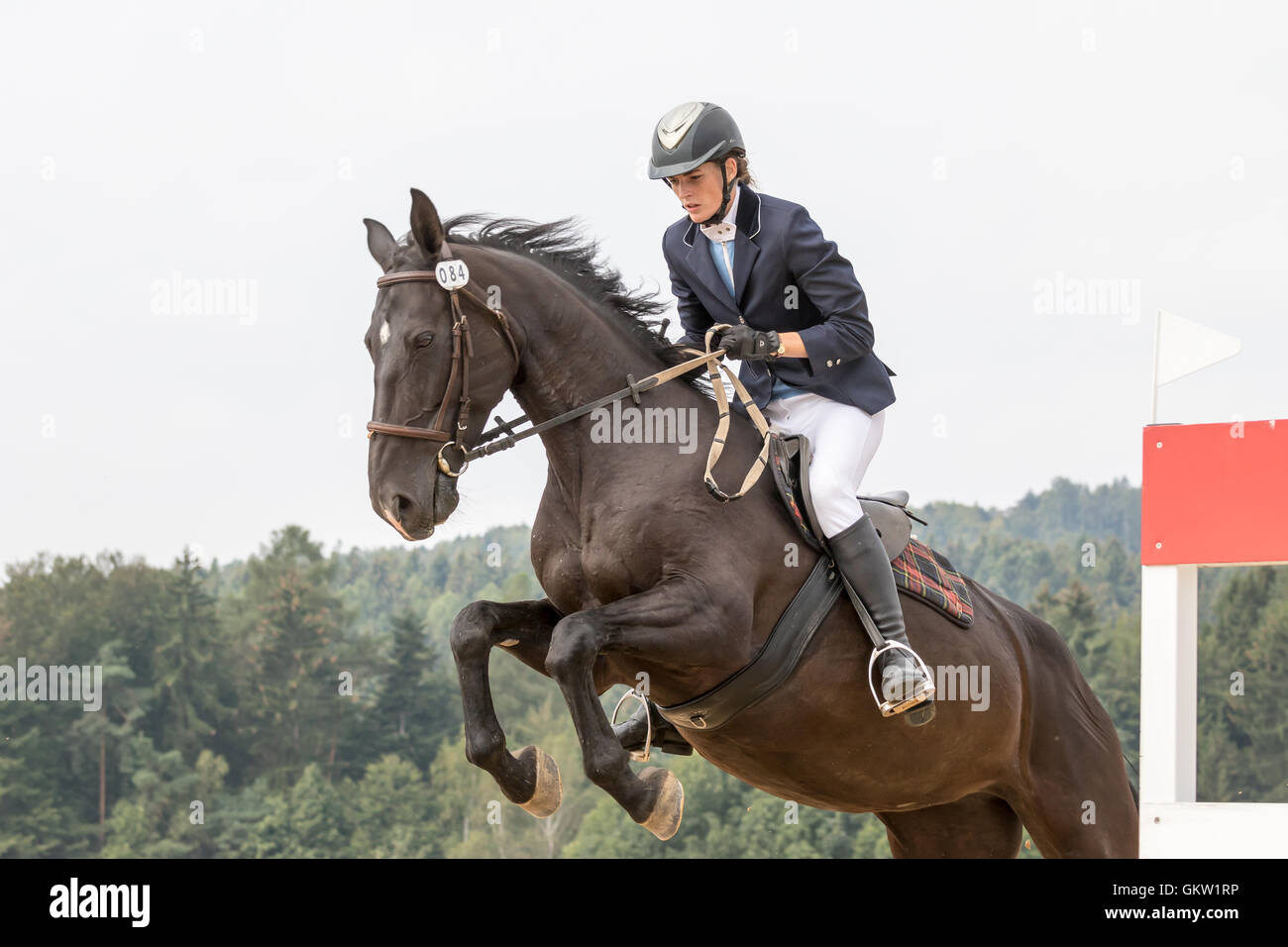 Closeup view of horsewoman in jump on a dark horse Stock Photo