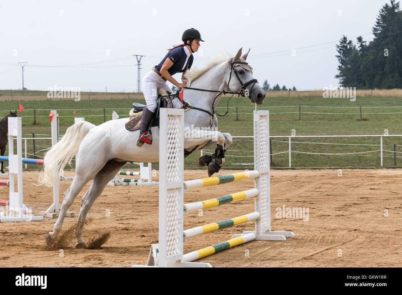 Long Haired Beautiful Horsewoman On A White Horse Is Jumping Stock Photo Alamy