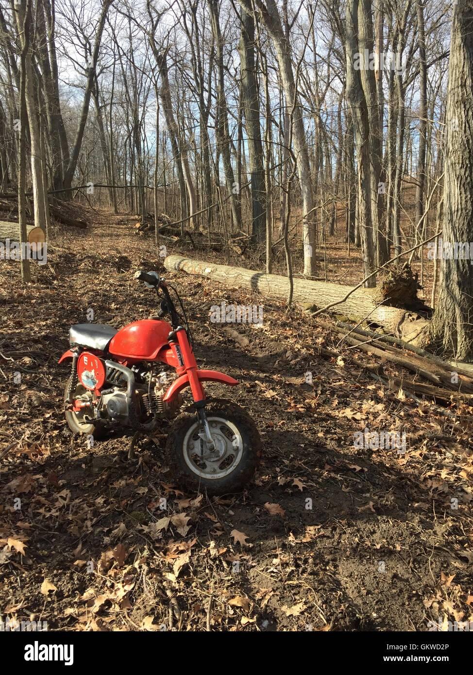 Mini Dirt bike on a trail - Stock Image