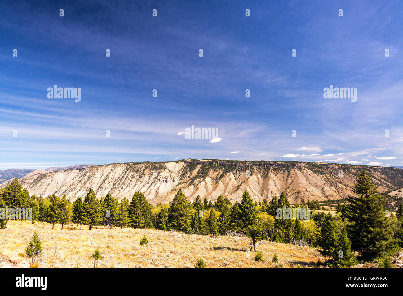 Beautiful landscape near Mammoth Hot Springs in Yellowstone National Park - Stock Image