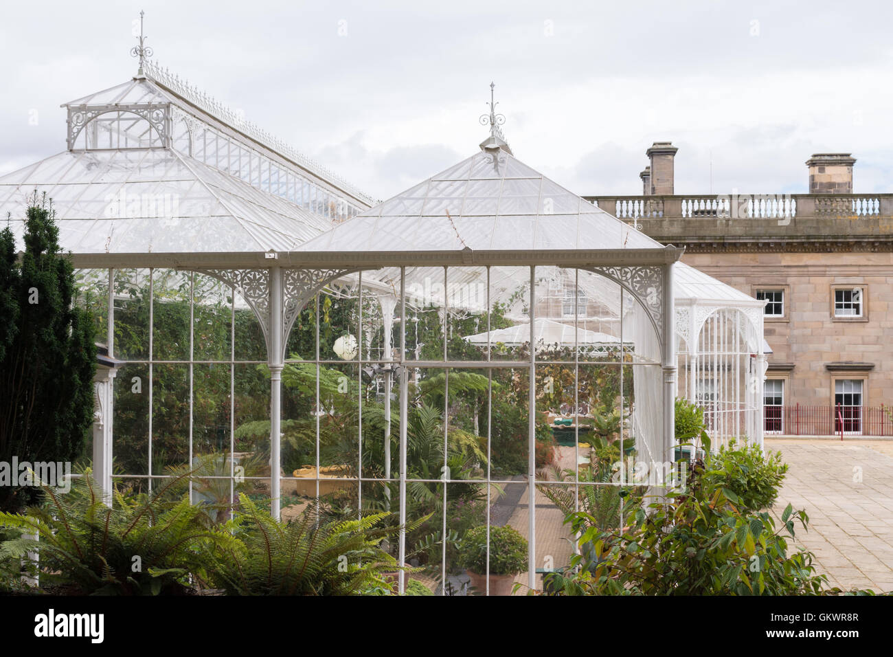 Wentworth Castle - Victorian Conservatory and Country House, Stainborough, Barnsley, South Yorkshire, England, UK - Stock Image