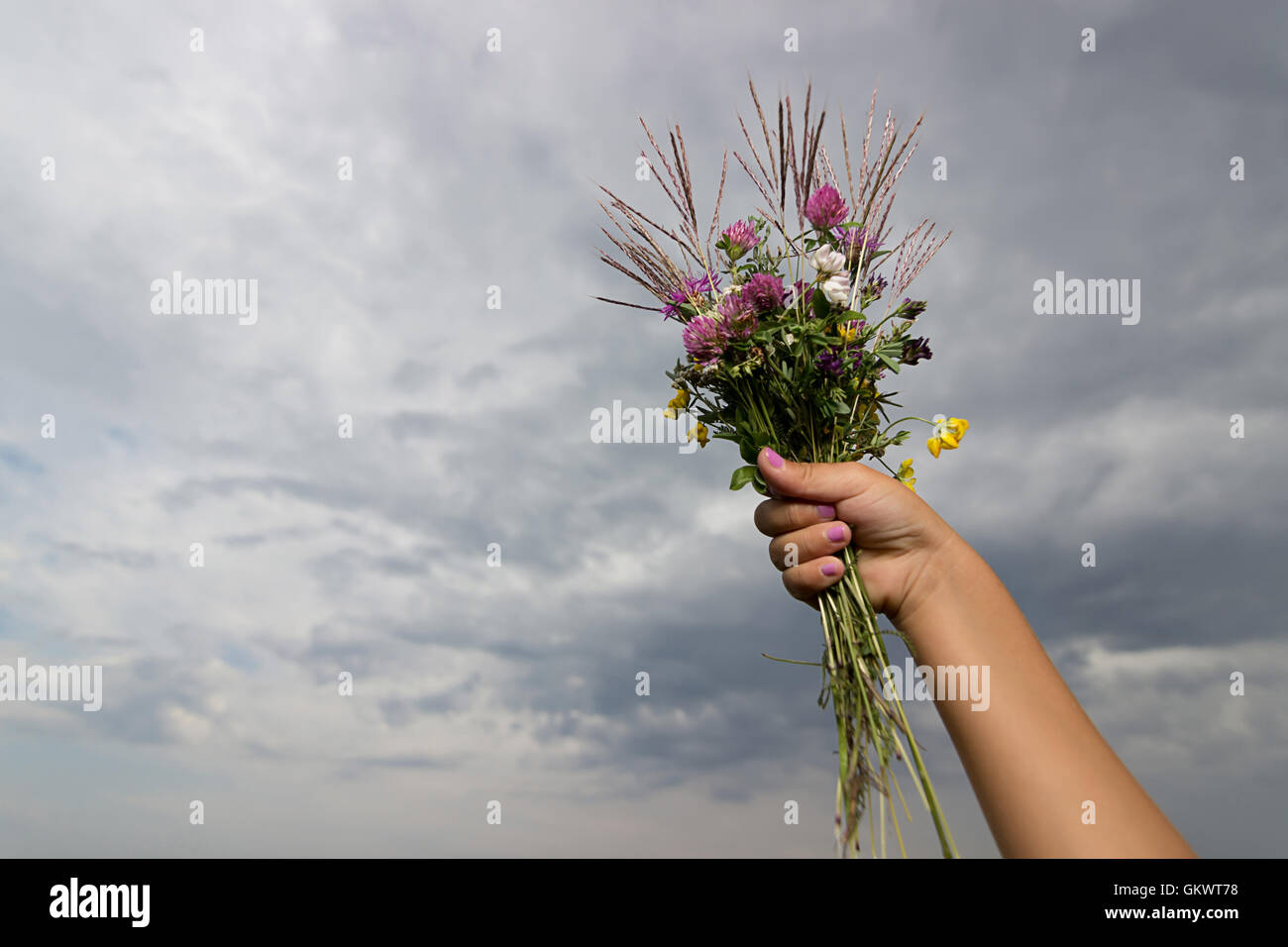 Mazzo Di Fiori The West.Wiled Flower Stock Photos Wiled Flower Stock Images Alamy
