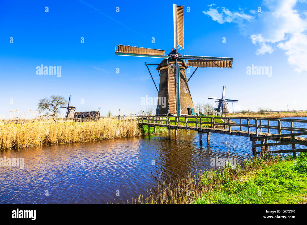 famous windmills of Netherlands in Kinderdjik - Stock Image