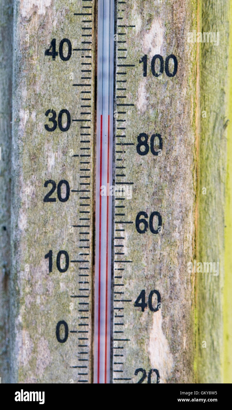Brighton, UK. 24th Aug, 2016. A thermometer reads 32 degrees centigrade in the shade in a Brighton garden this morning - Stock Image