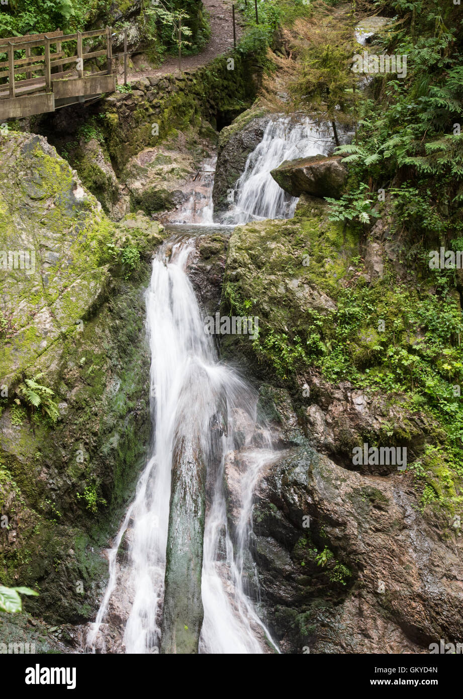 Bonndorf, Germany. 13th July, 2016. The Lotenbachkamm in the Wutachschlucht nature reserve in Bonndorf, Germany, - Stock Image