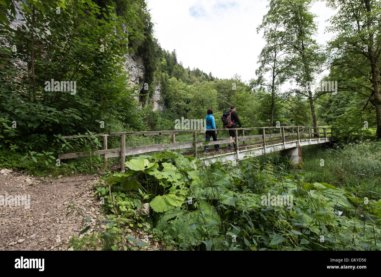 Bonndorf, Germany. 13th July, 2016. A view of the Wutachschlucht nature reserve in Bonndorf, Germany, 13 July 2016. - Stock Image