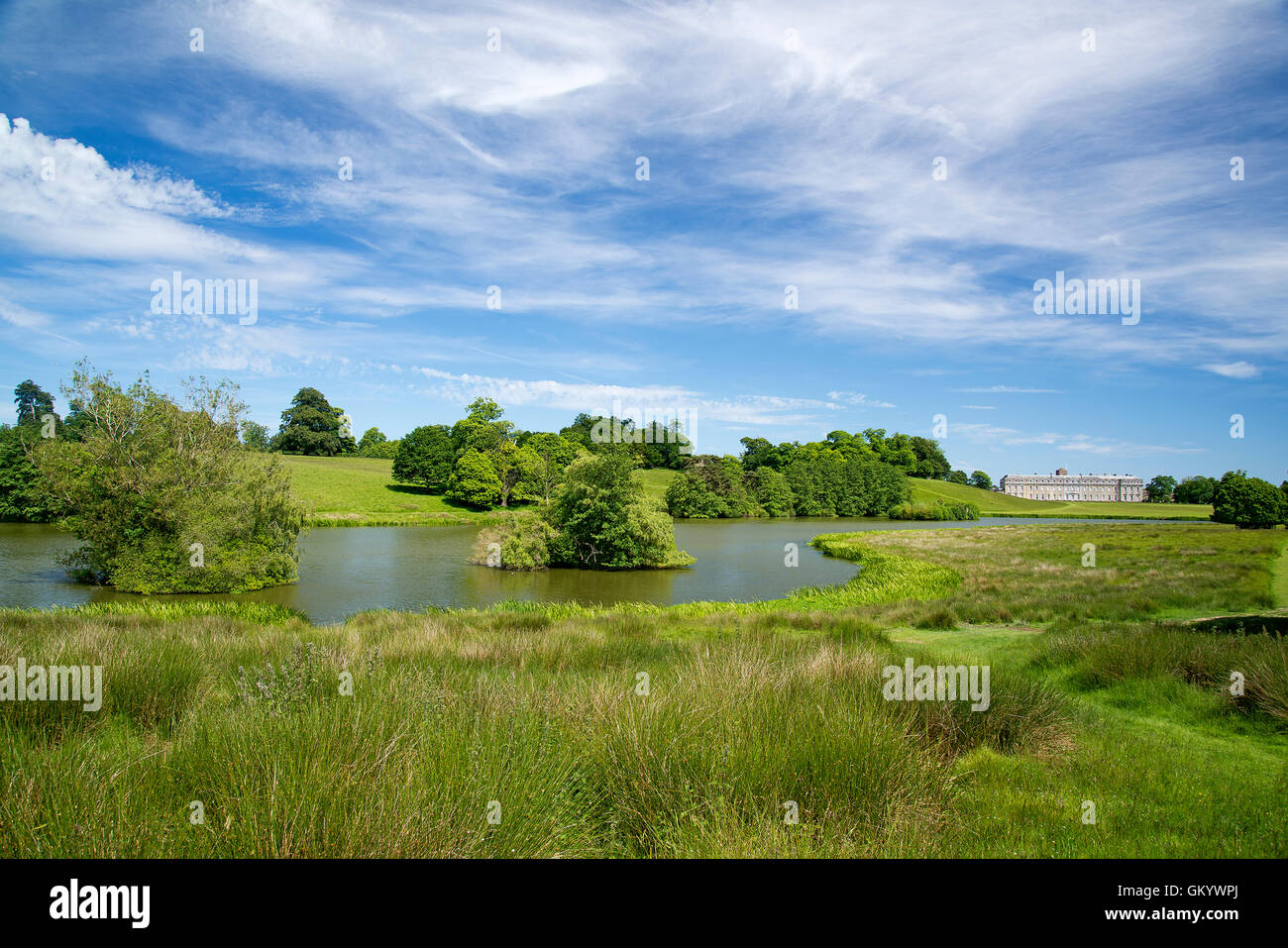 Landscape created by Capability Brown at Petworth - Stock Image