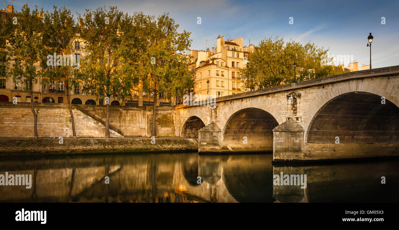 Morning sunlight on Ile Saint Louis and aspen trees lining the Seine river bank by Pont Marie and Quai d'Anjou. - Stock Image