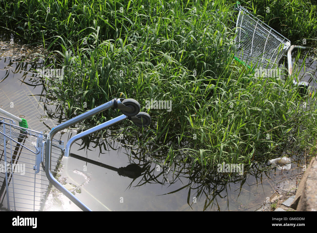 Dumped shopping trolley in the River Sow in Stafford Stock Photo