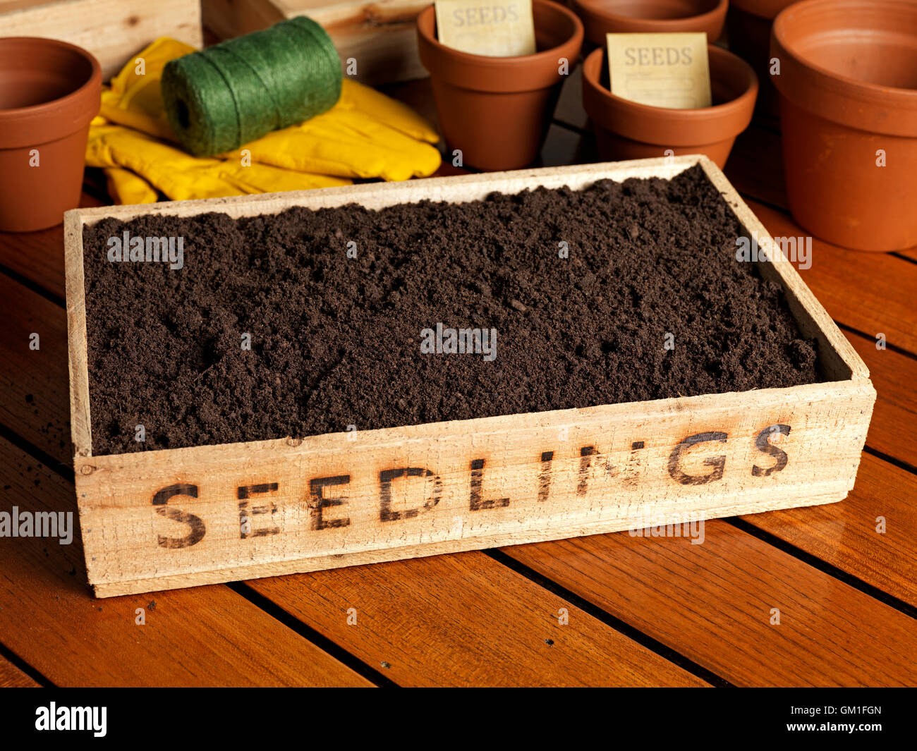 seedling tray filled with soil with a gardening background - Stock Image