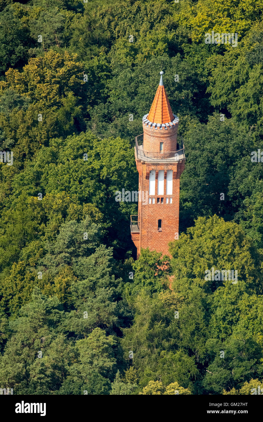 Aerial view, tower height with Brehm Tollensesee, brick tower, Neubrandenburg, Mecklenburg Seascape, Mecklenburg - Stock Image