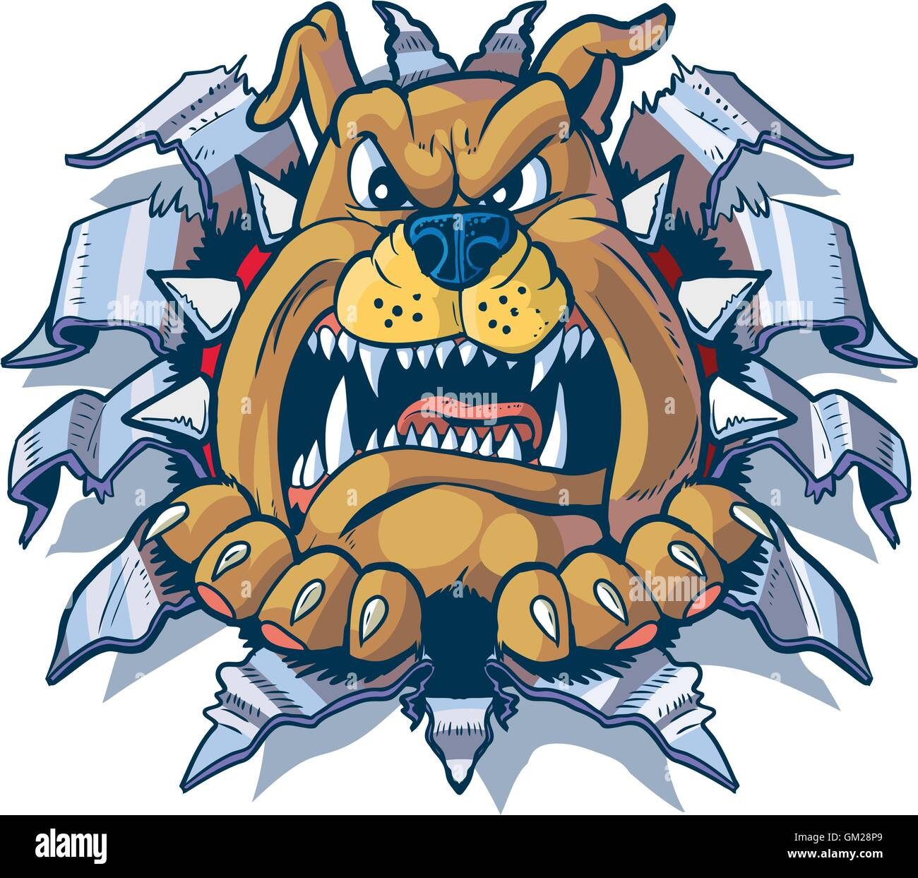 Vector cartoon clip art illustration of an angry bulldog with a spiked collar ripping, punching, or tearing through - Stock Vector
