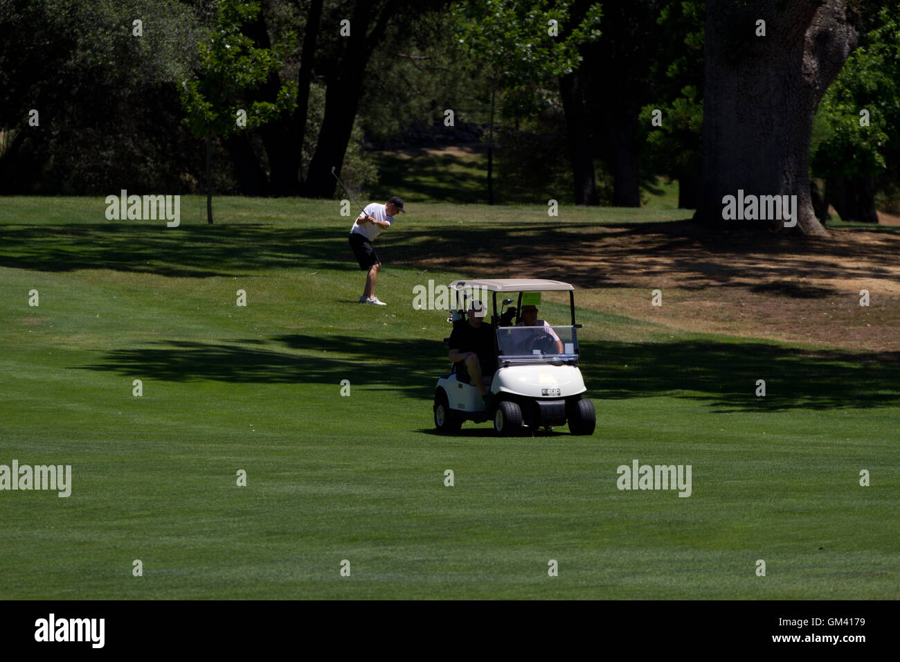 Golf buggy and players on golf course. California. USA - Stock Image