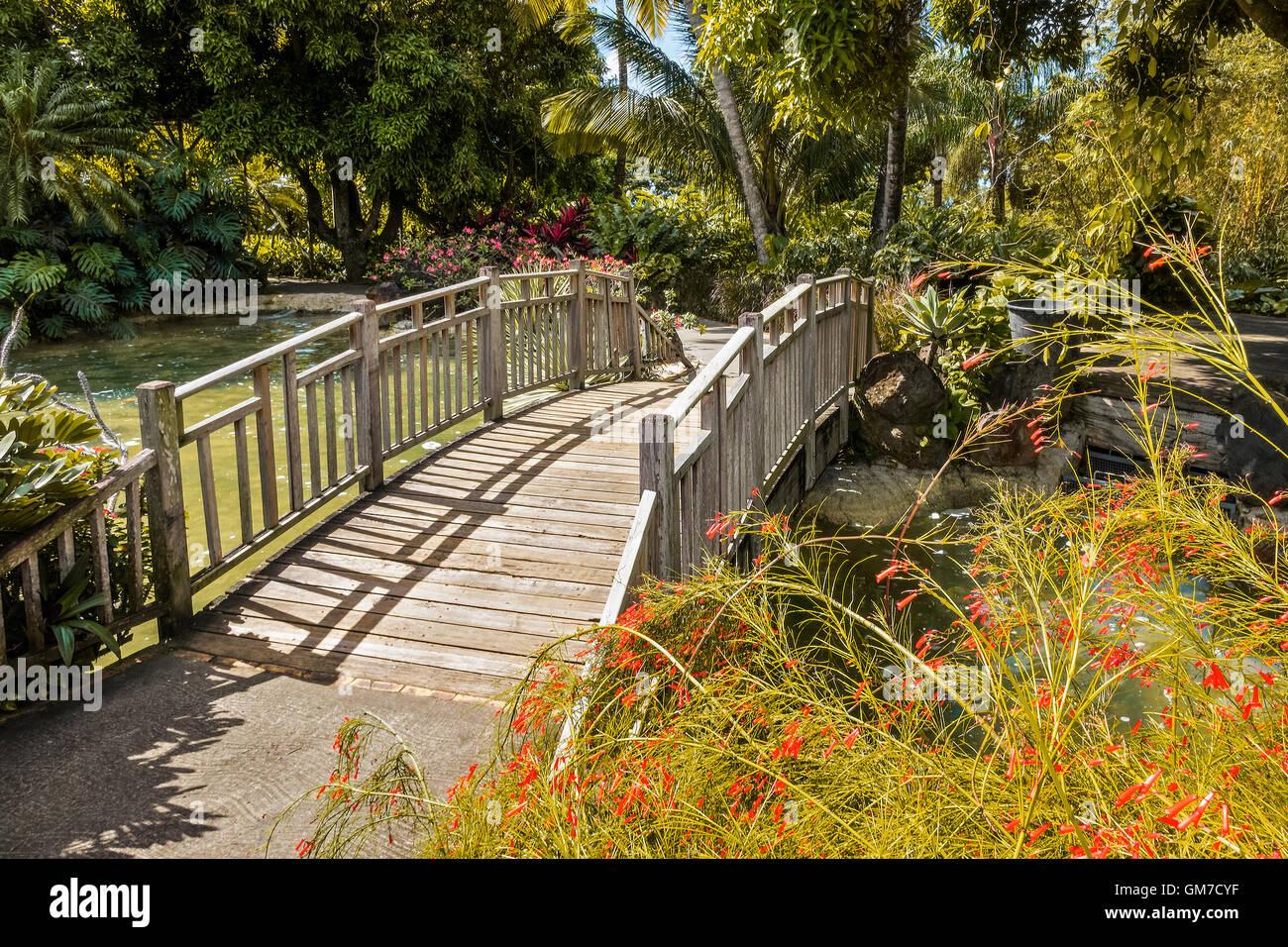 Bridge Across Watercourse Balata Botanical Gardens Guadeloupe West Indies - Stock Image