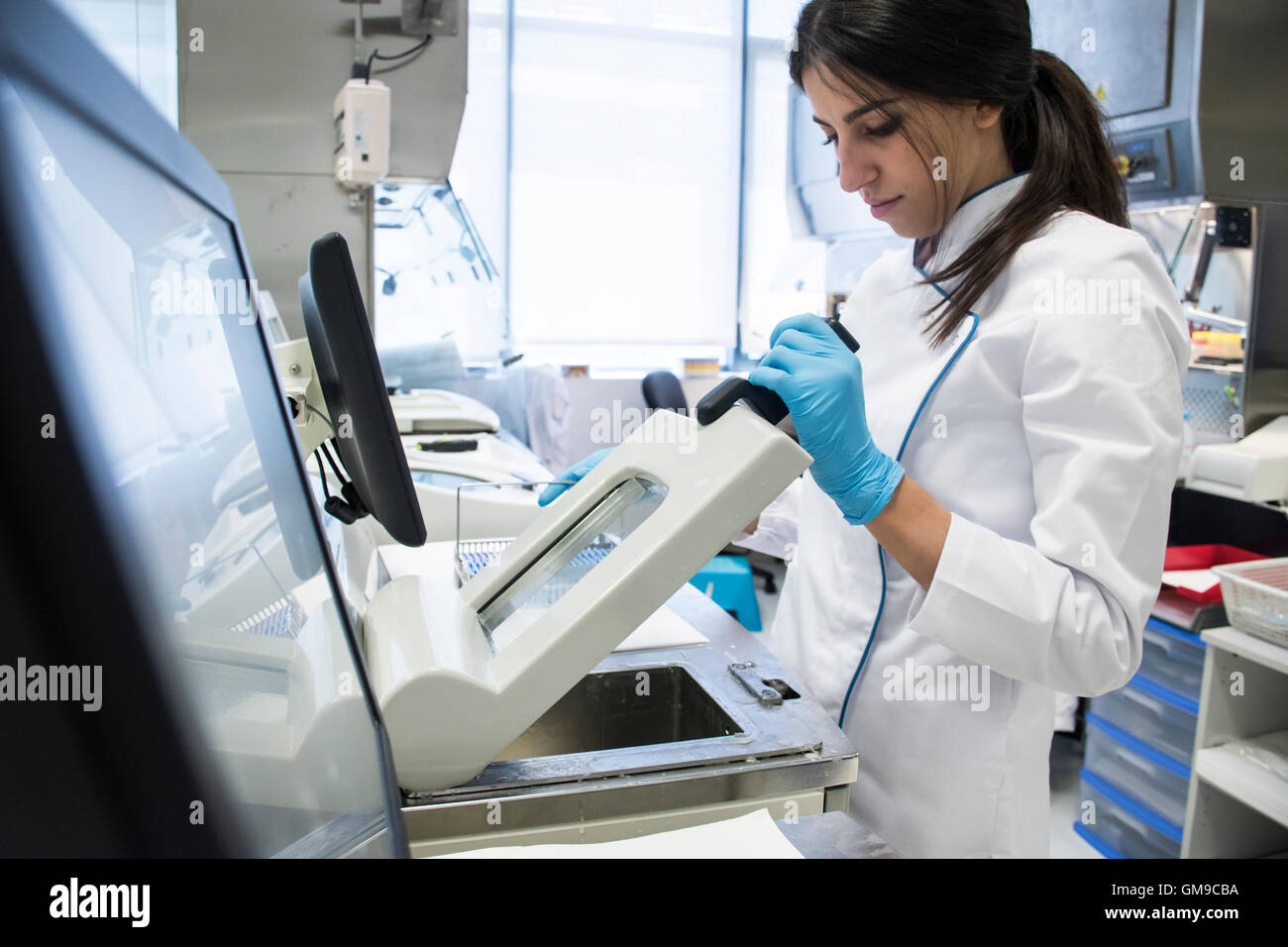 Laboratory technician in analytical laboratory using a cytology scanner Stock Photo