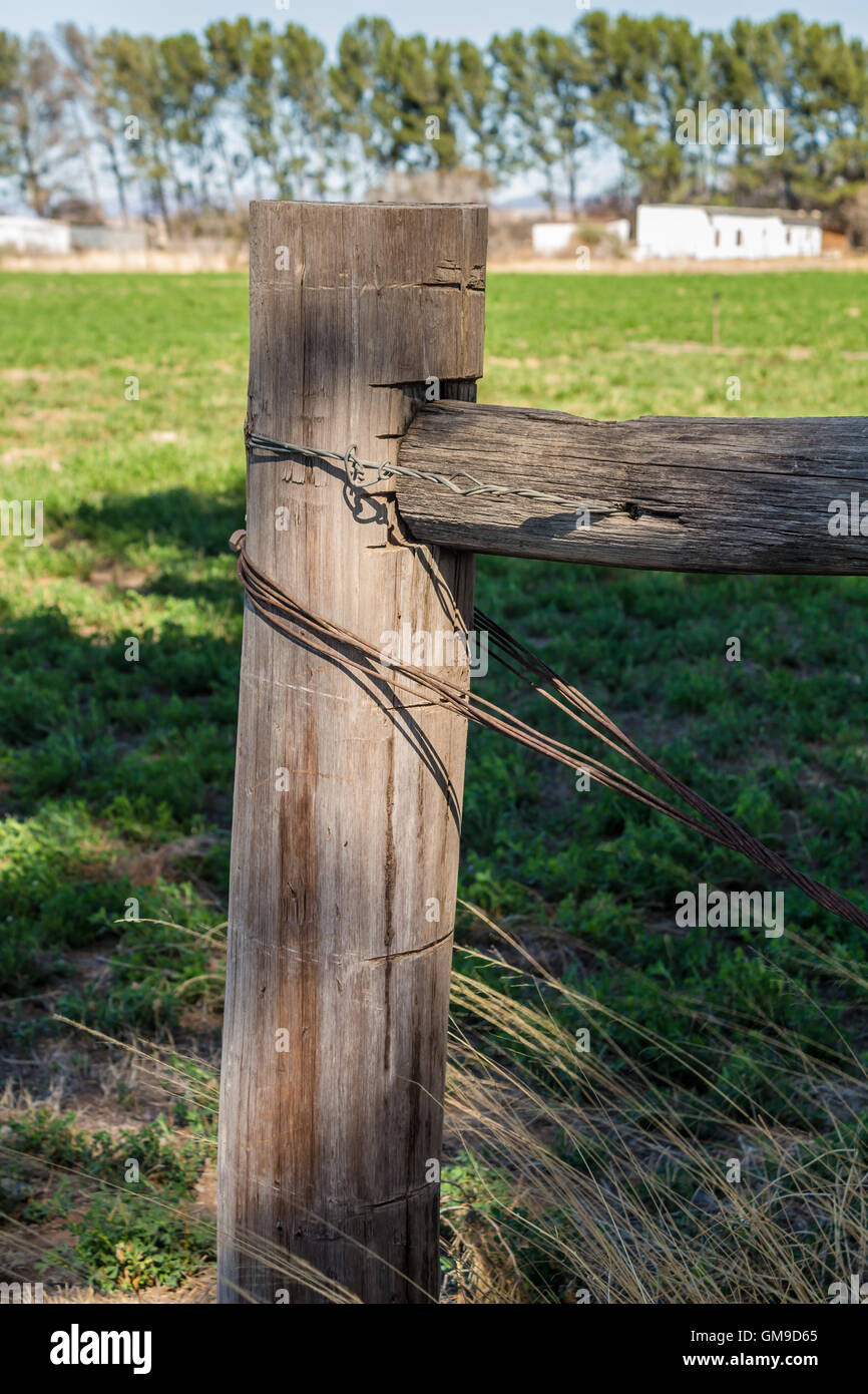 Weathered fence post with rusty wire stays - Stock Image