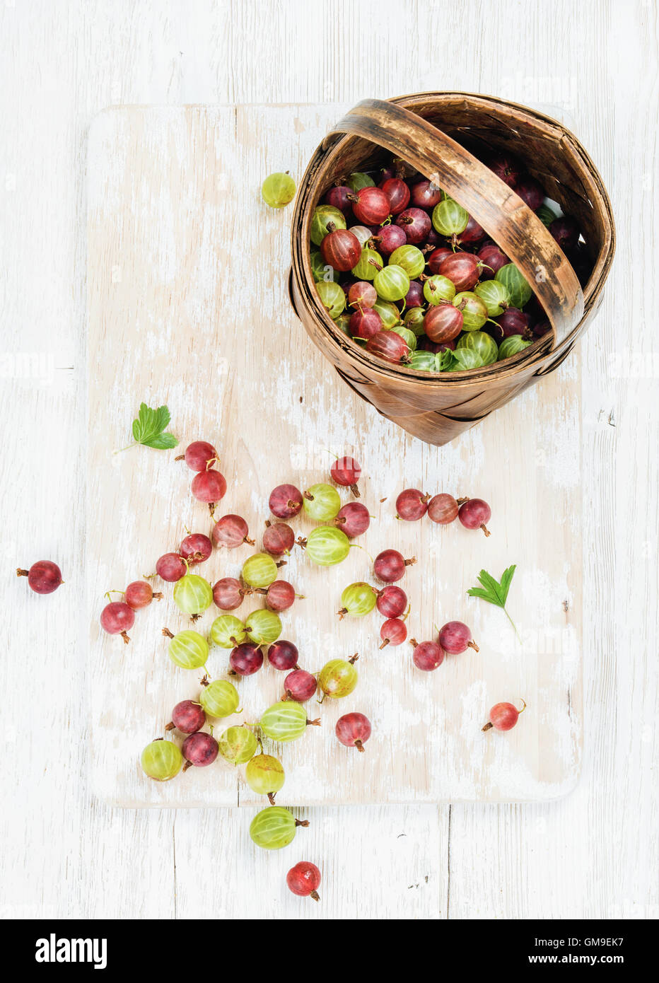 Variety of ripe garden gooseberries in birchbark basket - Stock Image