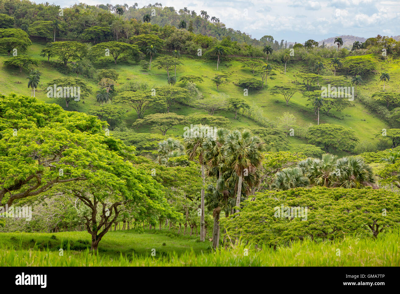 DOMINICAN REPUBLIC - Landscape in mountains, northern DR. - Stock Image