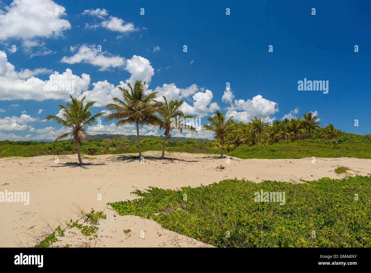 DOMINICAN REPUBLIC - Beach landscape with palm trees at mouth of Yasica River, near Cabarete. - Stock Image