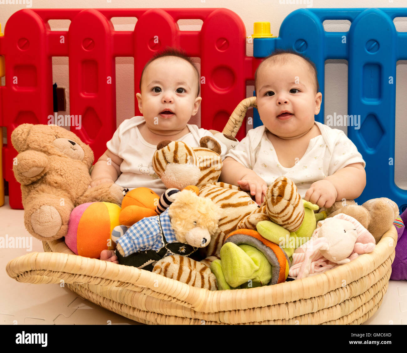 two happy twin babies in basket of toys in playpen - Stock Image