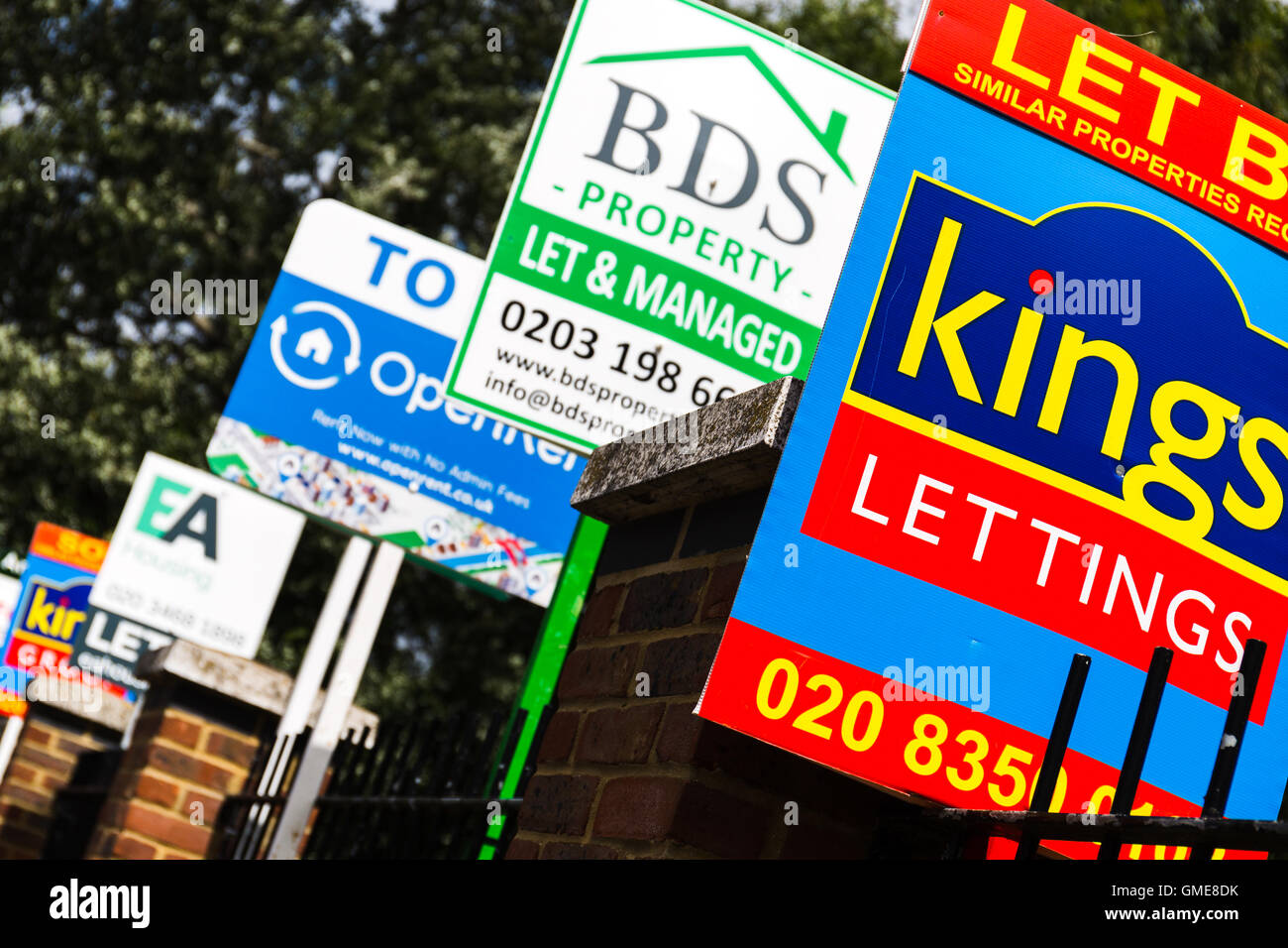 Houses to let signs London England UK - Stock Image