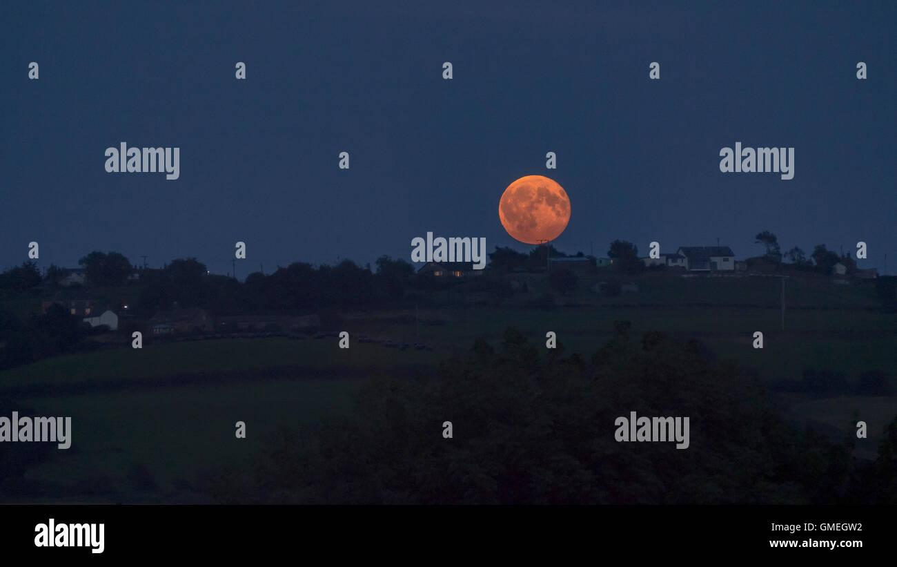 A red full moon rising above the horizon - Stock Image