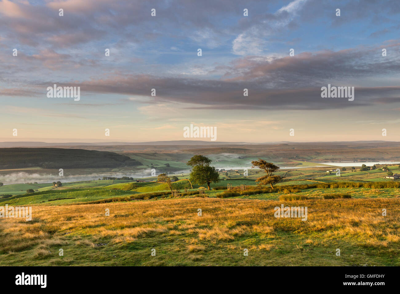 Harter Fell, Lunedale, County Durham UK. Saturday 27th August 2016.  UK Weather.  It was a cool and misty start - Stock Image