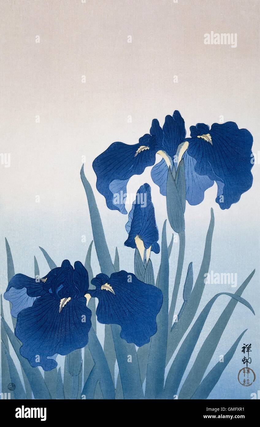 Irises By Ohara Koson And Watanabe Shozaburo C 1925 36 Japanese Print Color Woodcut BSLOC 2016 2 282