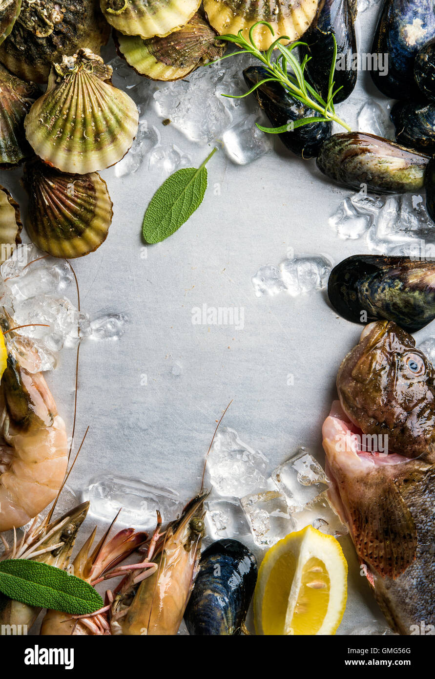 Fresh seafood with herbs and lemon on ice. Prawns, fish, mussels, scallops over steel metal background. Top view, - Stock Image