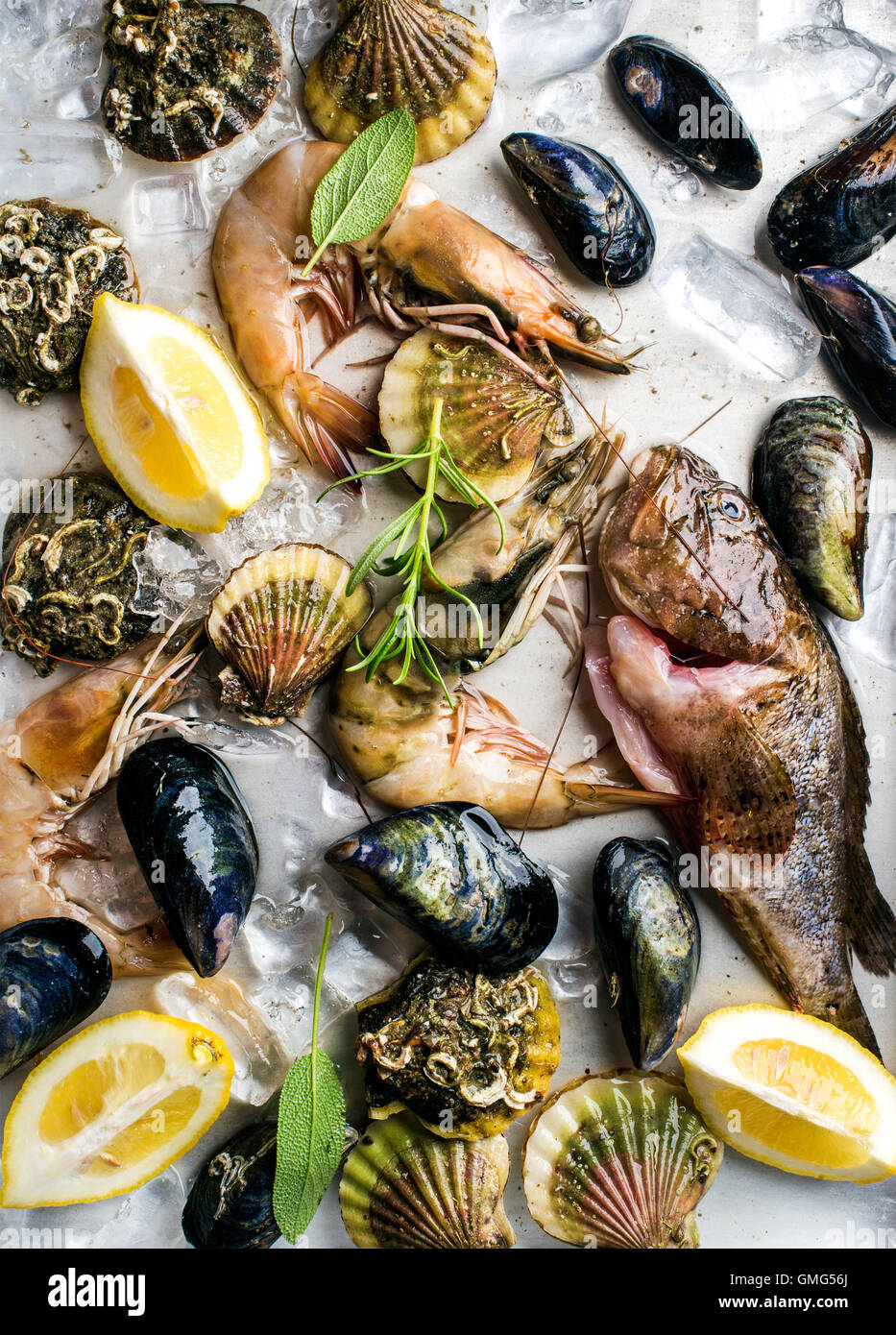 Fresh seafood with herbs and lemon on ice. Prawns, fish, mussels, scallops over steel metal tray - Stock Image