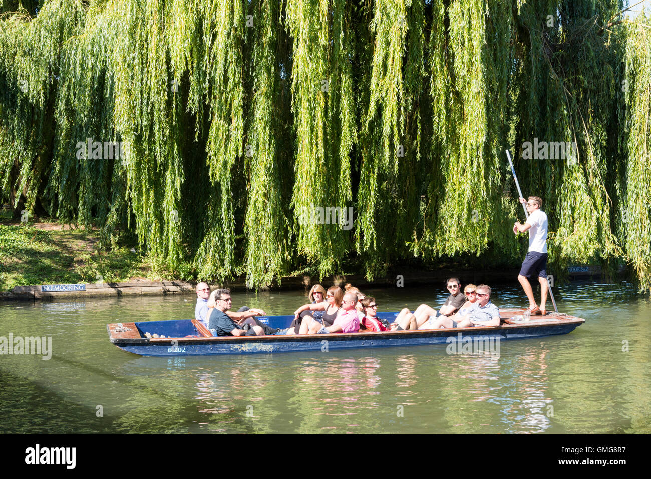 People punting on the River Cam on the Backs at Cambridge Uk in summer - Stock Image