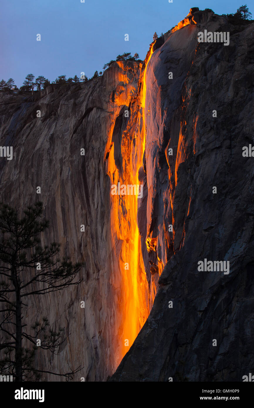 Yosemite's Horsetail fall  illuminated at sunset in the park during the month of February. The natural fire fall Stock Photo