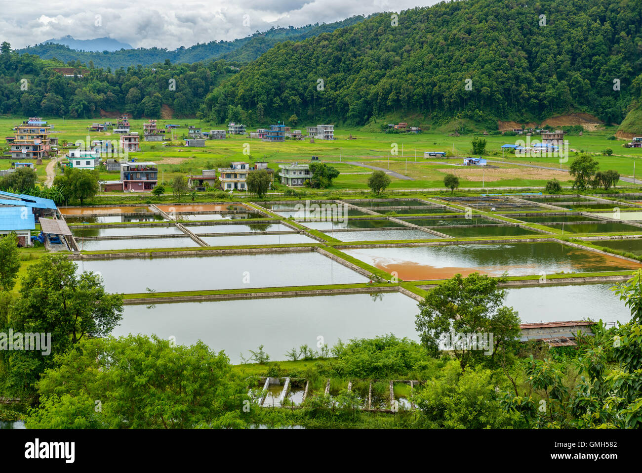 Nepal Agriculture Stock Photos & Nepal Agriculture Stock Images - Alamy