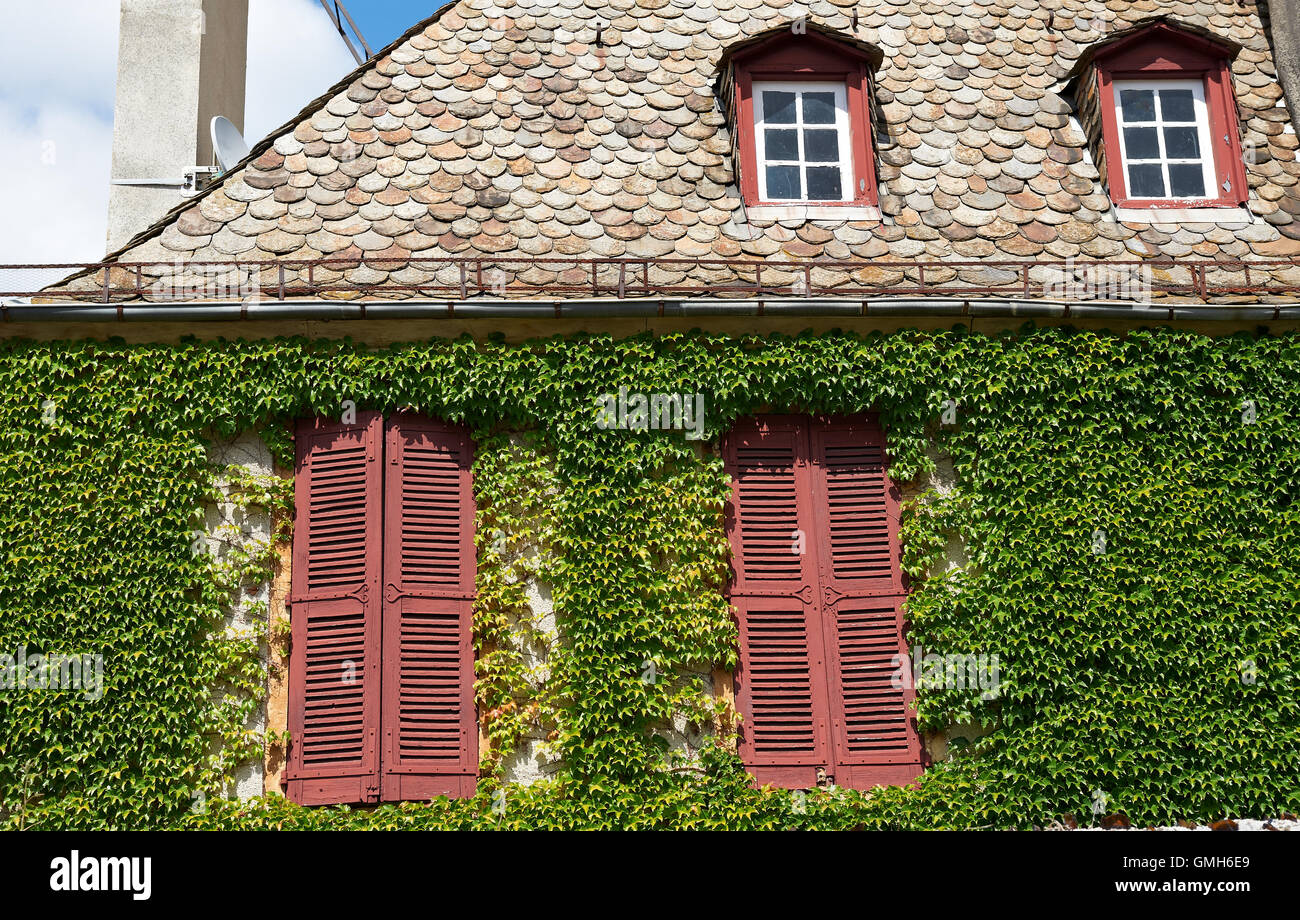 The Windows - Stock Image