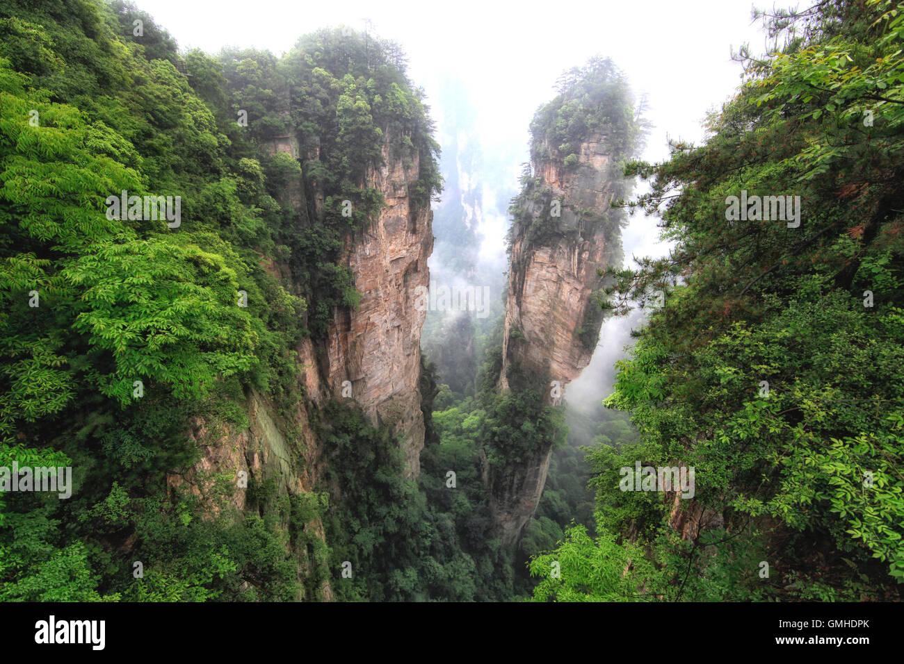 Panoramic view of Zhangjiajie National Park - Stock Image