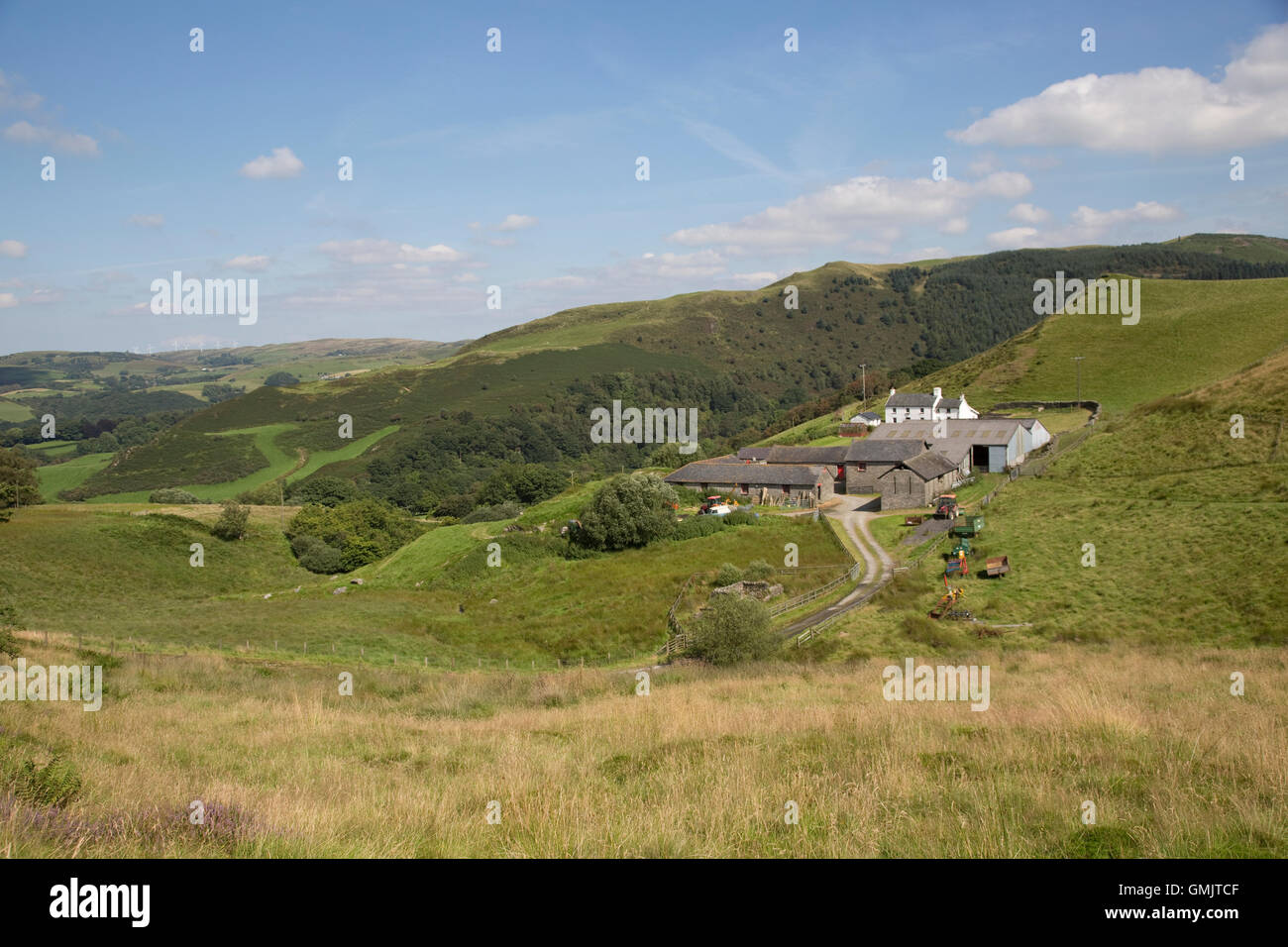 Remote Welsh farm in Cambrian Mountains near Devil's Bridge Ceredigion Wales - Stock Image