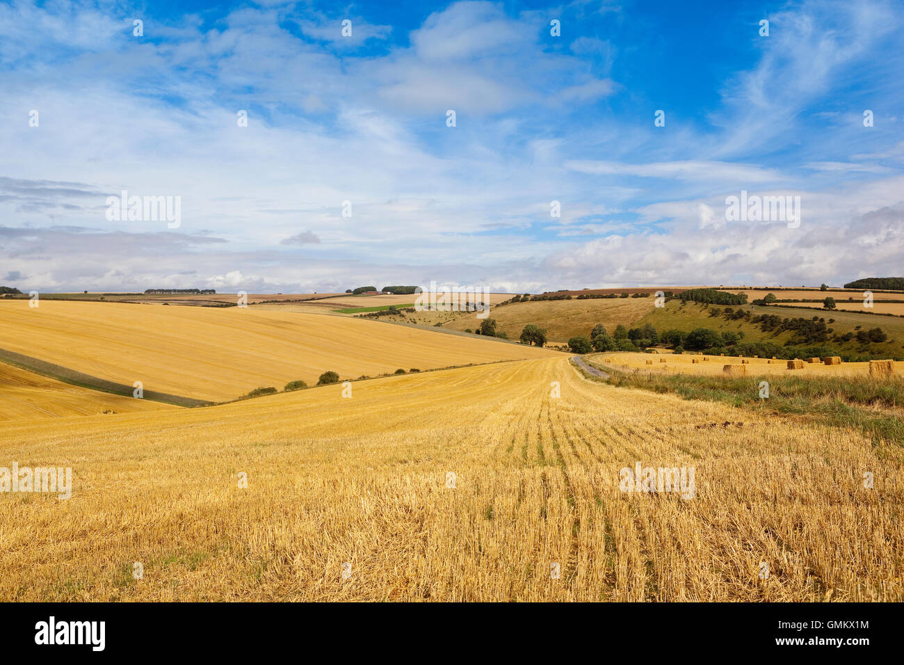Patterns And Texture Of Newly Harvested Stubble Fields On