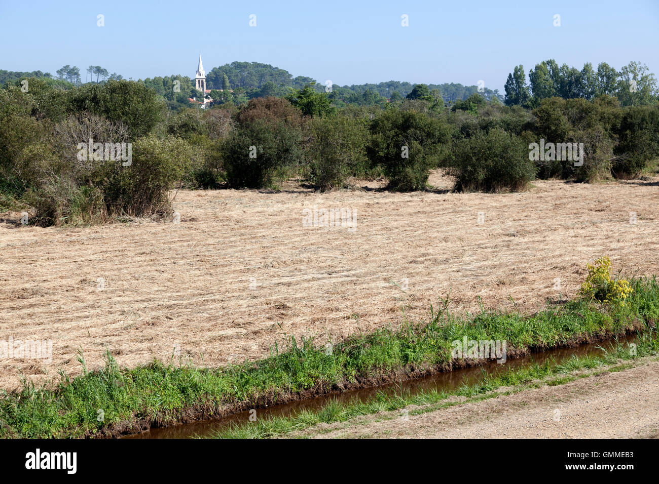 A large view of a part of the 'Barthes' of Monbardon (Soorts Hossegor - Landes - France) with a drain to - Stock Image