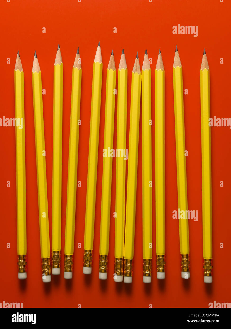 Pencils on a line on a red background - Stock Image