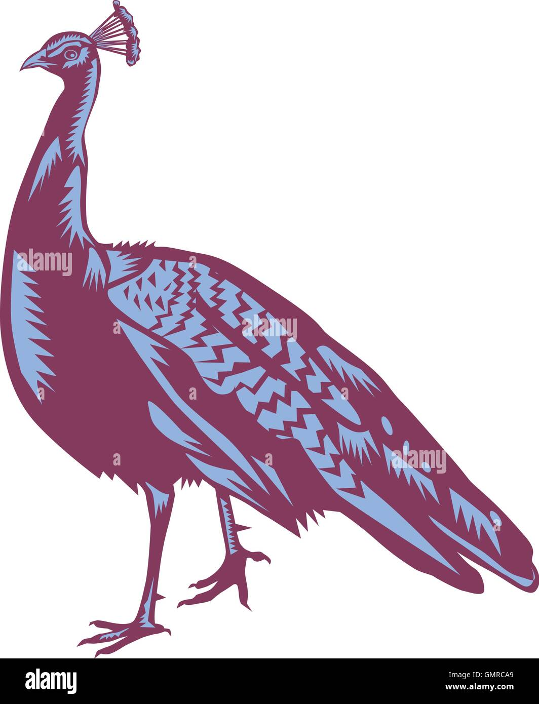 Male Indian Peacock Woodcut - Stock Vector