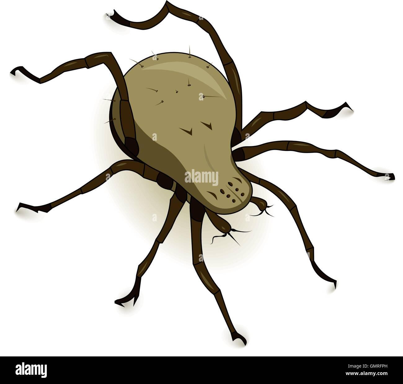 Vector Dust Mite Parasite - Stock Image