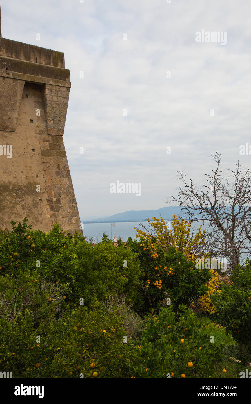 Orange next to the fortress - Stock Image